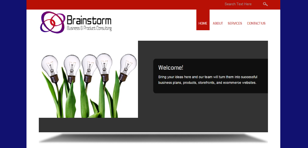 Brainstorm Business Consulting website by Prodigy Designs     www.brainstormbusinessconsulting.com