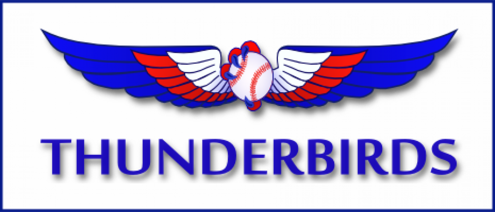 Thunderbird Baseball Logo by Prodigy Designs