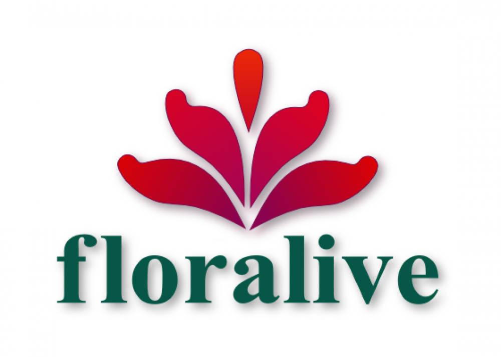 Floralive Logo by Prodigy Designs of Little Rock, Arkansas